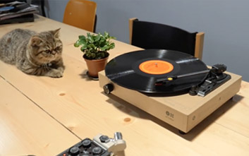 diy record player happy mag spinbox
